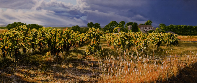 """Languedoc: the Golden Hour     200815"""" x 36"""" oil on plywood panel"""