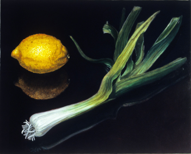"Lemon Solo       1999		12"" x 15"" 	oil on plywood panel"